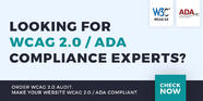 WCAG 2.0 web accessibility development services