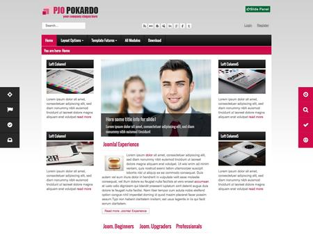 Polardo - Business Template