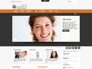 Td_Ingence - responsive template