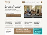 B Mercury - Professional Business and Portfolio  Template
