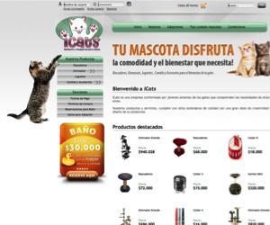 Ictas - gimnasios gatos