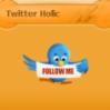 Twitter Holic